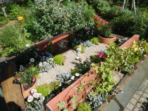 秘密の花園1