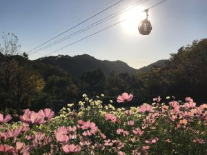 (公財)神戸市公園緑化協会理事長賞 布引ハーブ園