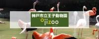 神戸市立王子動物園