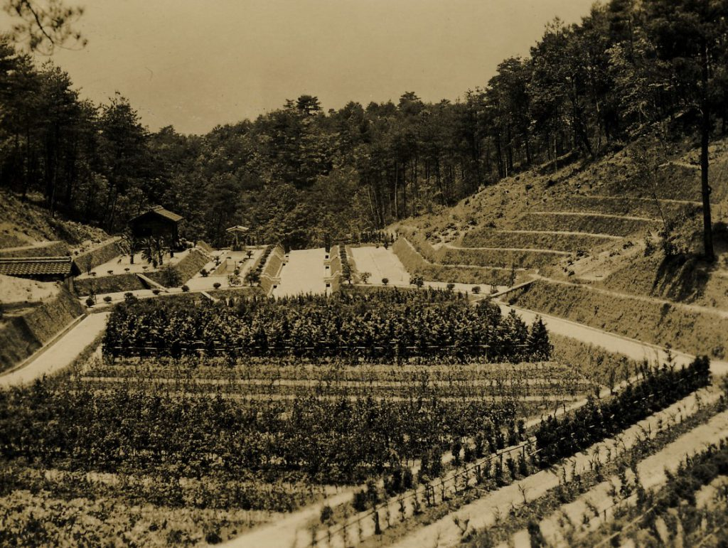 1941年(昭和16)附属苗畑完成