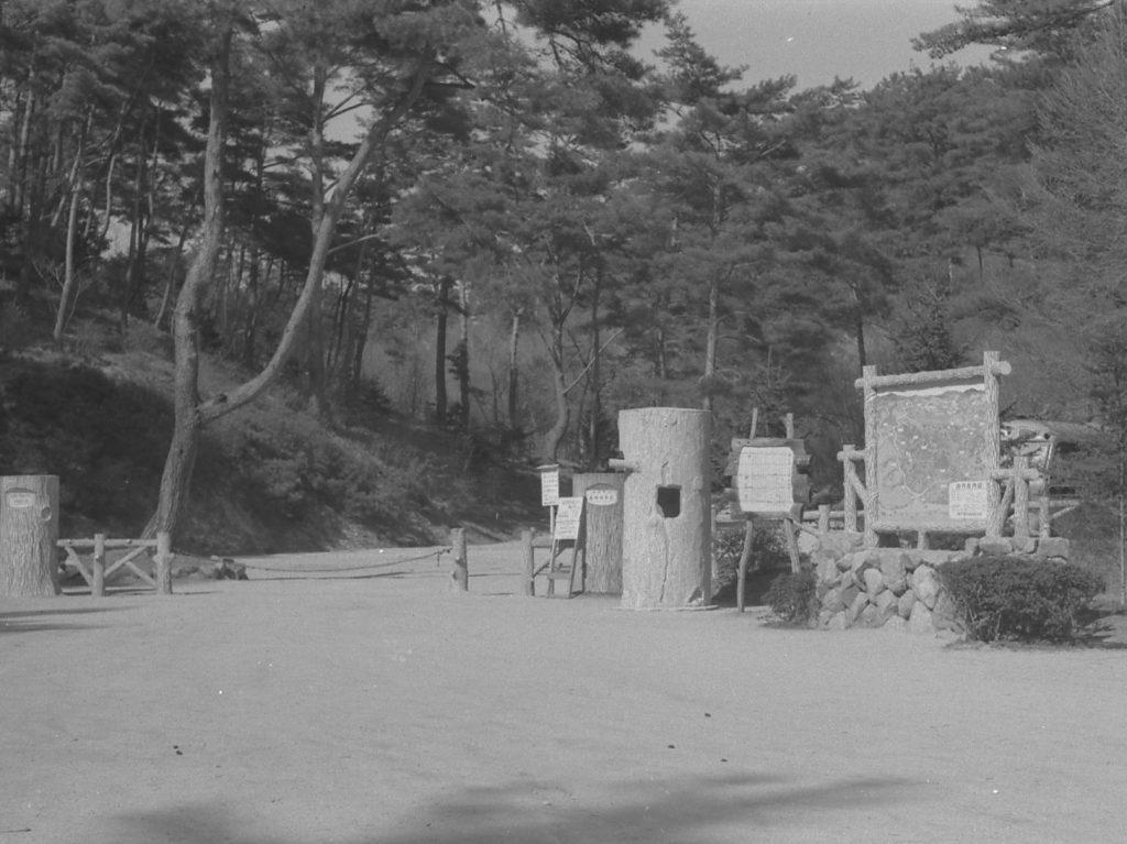 1954年(昭和29) 正門景観