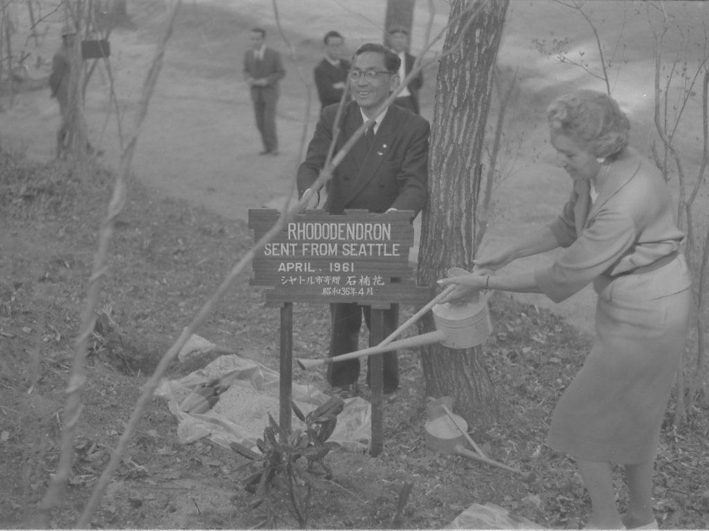1961年(昭和36) 北アメリカ区シャクナゲ記念植樹