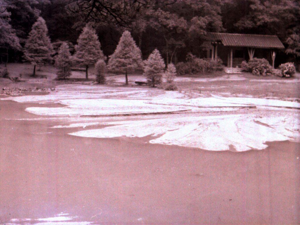 1961年(昭和36) 長谷池豪雨被害