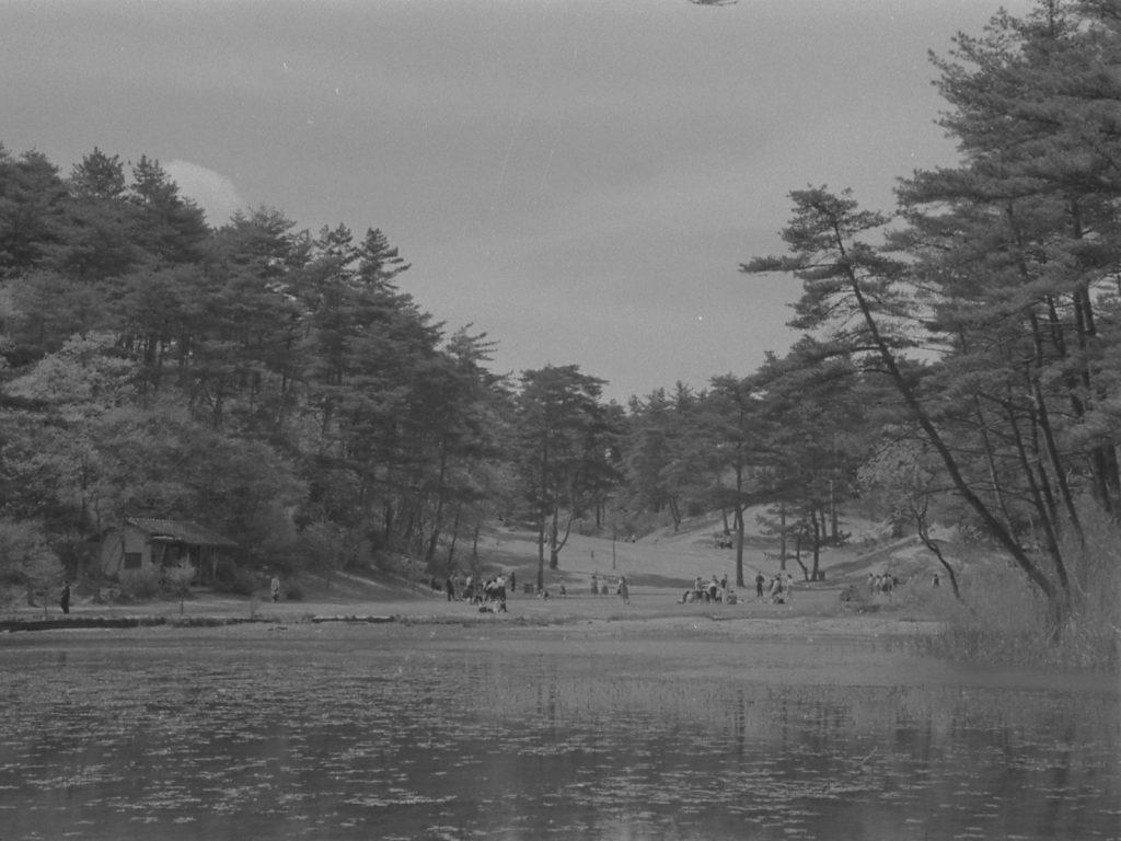 1963年(昭和38) 長谷池景観