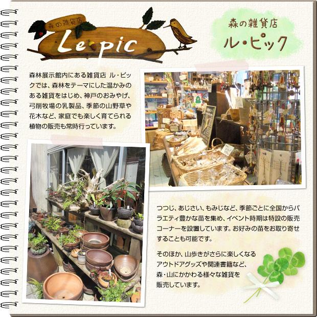 森の雑貨店 ル・ピック 森林展示館内にある雑貨店ル・ピックでは、森林をテーマにした温かみのある雑貨をはじめ、神戸のおみやげ、弓削牧場の乳製品、季節の山野草や花木など、家庭でも楽しく育てられる植物の販売も常時行っています。つつじ、あじさい、もみじなど、季節ごとに全国からバラエティ豊かな苗を集め、イベント時期は特設の販売コーナーを設置しています。お好みの苗をお取り寄せすることも可能です。そのほか、山歩きがさらに楽しくなるアウトドアグッズや関連書籍など、森・山にかかわる様々な雑貨を販売しています。