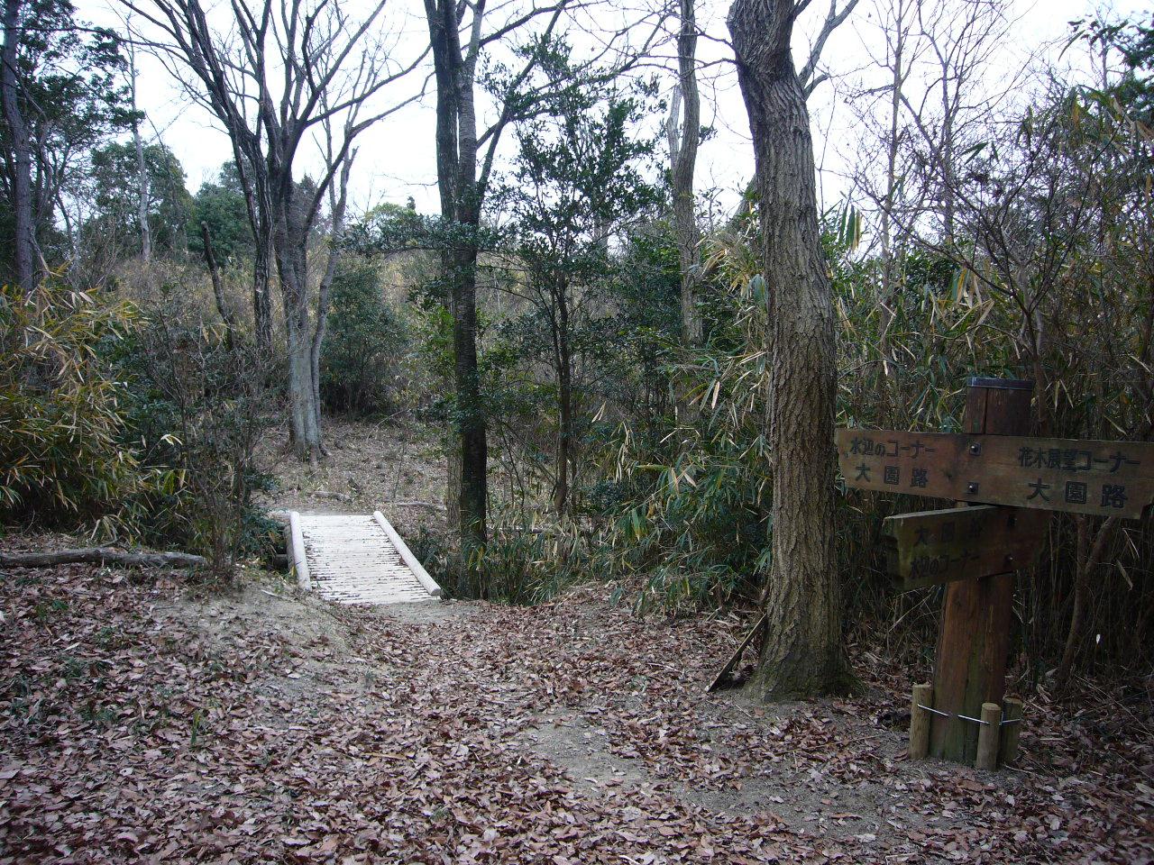 北ゾーンの東にはこんな木橋が