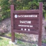 对50选hyogo森林浴,也被选