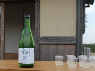 ainasatoyama2