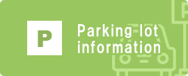 Parking lot guidance